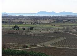 Visita al celler Espelt a Vilajuïga amb tast de vins