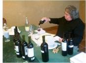 El vins de l'Empordà: