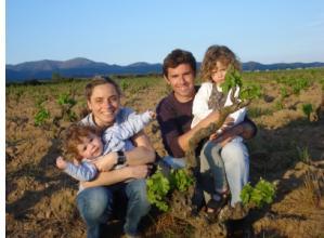 Descobreix les Vinyes centenaries de cultiu ecològic de Roig Parals