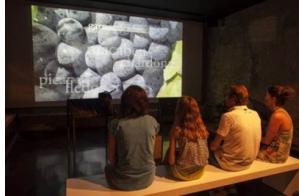 Visita al museu Coll de Roses, Wine Family Museum, i tast dels seus vins