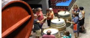 Descobreix el primer celler de vinificació moderna de l'Empordà: El celler Cooperatiu d'Espolla